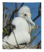 A Frigatebird Sitting In A Nest Fleece Blanket