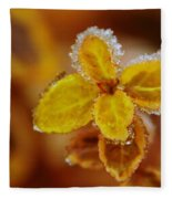 A Frosted Plant Fleece Blanket