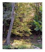 A Golden Hill Of Sunlight Fleece Blanket