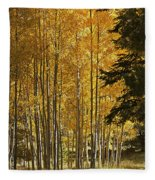 A Golden Trail Fleece Blanket