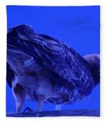 A Hawk Looks Back  Fleece Blanket