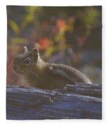 A Little Chipmunk  Fleece Blanket
