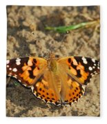 A Painted Lady Looking For Sex 8619 3369 Fleece Blanket