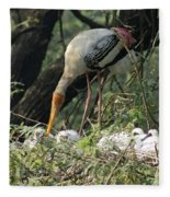 A Painted Stork Feeding Its Young At The Delhi Zoo Fleece Blanket