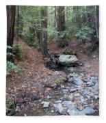 A Peaceful Redwood Creek On Mt Tamalpais Fleece Blanket