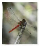 A Red Dragonfly Fleece Blanket