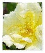 A Rose Is A Rose Rrp Fleece Blanket