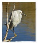 A Snowy Egret  Fleece Blanket