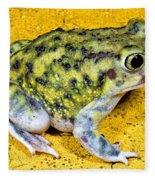 A Spadefoot Toad Fleece Blanket