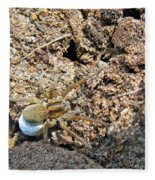 A Spider With The Egg Sack Square Fleece Blanket