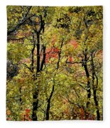 A Splash Of Fall Fleece Blanket