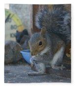 A Squirrel In 55 Degree Weather Fleece Blanket