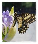 A Swallowtail Butterfly Fleece Blanket
