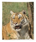 A Tiger Lying Casually But Fully Alert Fleece Blanket