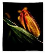 A Tulip With Sheen Fleece Blanket