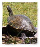 A Turtle Sunning Fleece Blanket