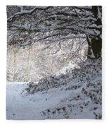A Walk In The Snow Fleece Blanket