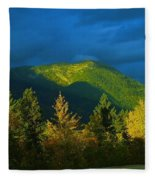 A Winding Autumn Road  Fleece Blanket