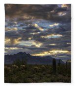 A Winter Sunrise In The Desert  Fleece Blanket