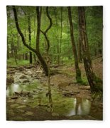 A Woodland Stream In Cades Cove No.472 Fleece Blanket