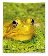 A Yellow Bullfrog Fleece Blanket