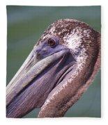 A Young Brown Pelican Fleece Blanket