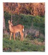Aah Baby - Deer Fleece Blanket