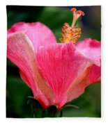 Abundantly Pink Fleece Blanket