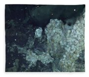 Active Hydrothermal Vent Fleece Blanket