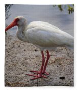 Adult White Ibis Fleece Blanket