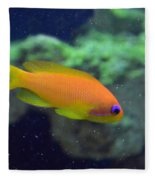 African Anthias Fleece Blanket