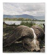 African Cape Buffalo Skull, Ngorongoro Fleece Blanket
