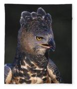 African Crowned Eagle Fleece Blanket