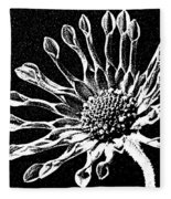 African Daisy In Black And White Fleece Blanket