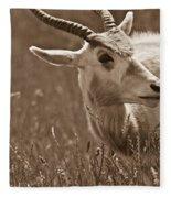 African Grassland Feeder 2 Fleece Blanket