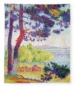 Afternoon At Pardigon Fleece Blanket