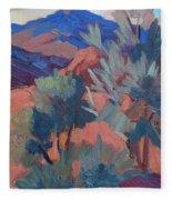 Afternoon Light - Santa Rosa Mountains Fleece Blanket