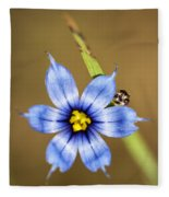 Alabama Blue-eyed Grass Wildflower - Sisyrinchium Angustifolium Fleece Blanket