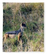 Alert Jackal Fleece Blanket