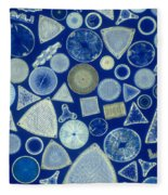Algae, Fossil Diatoms, Lm Fleece Blanket