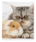 Alpaca Guinea Pig And Silver Tabby Cat Fleece Blanket