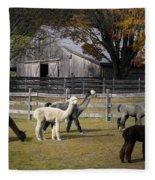 Alpacas In Vermont Fleece Blanket