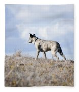 Alpha Dog Fleece Blanket