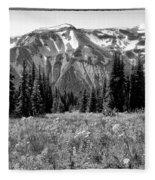 Alpine Meadow Viii At Mount Rainier Fleece Blanket