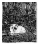 Always Hunting B-w Fleece Blanket