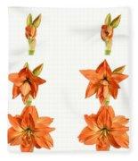 Amaryllis Blooming Fleece Blanket