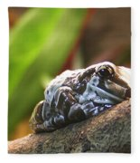 Amazon Milk Frog Fleece Blanket