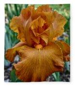 Amber Iris Fleece Blanket