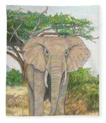 Amboseli Elephant Fleece Blanket