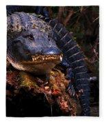 American Alligator On A Cypress Tree Fleece Blanket